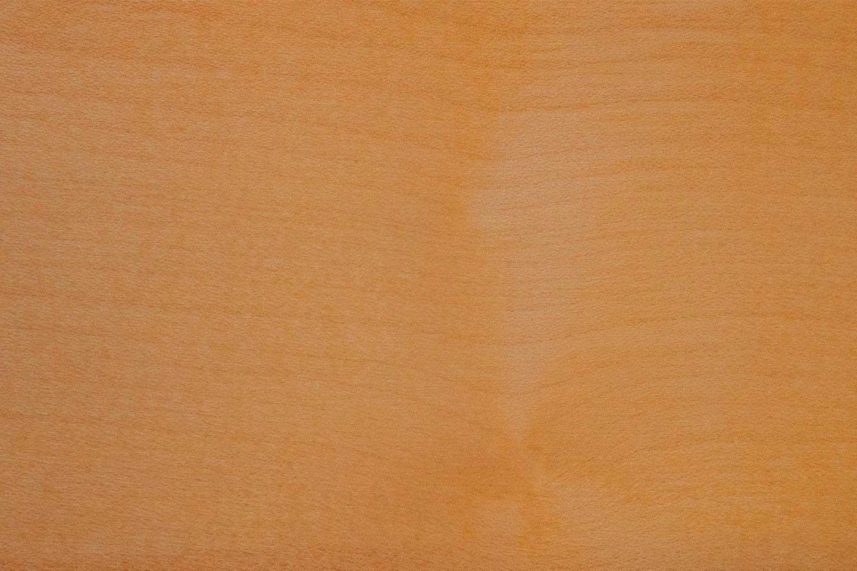 wood-species-maple