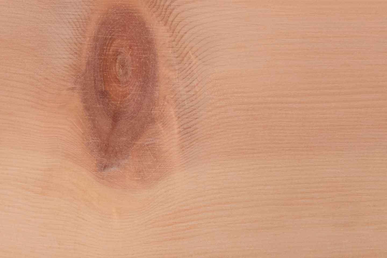 wood-species-pine