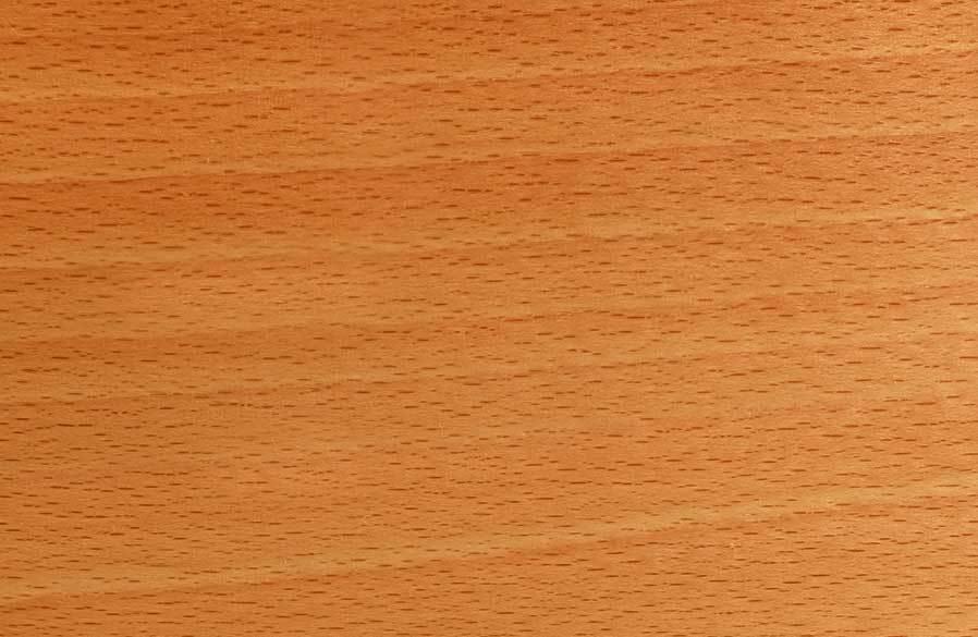 wood-species-red-beech