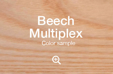 "beech-multiplex-example"""""