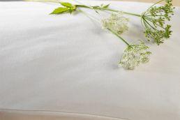 Pillowcase Jersey Uni, natural