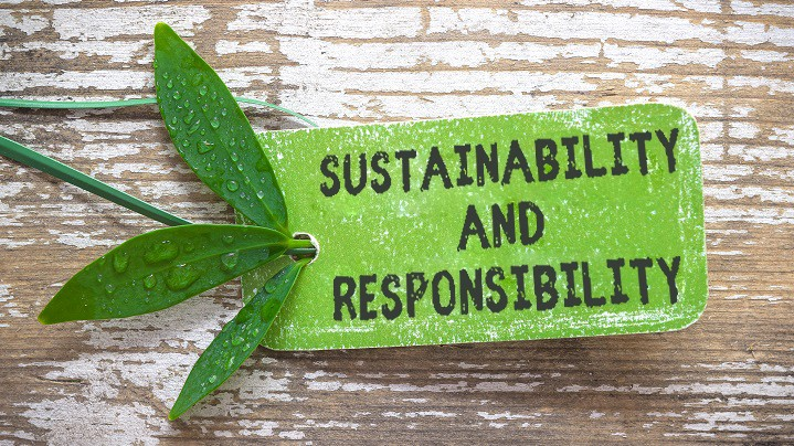 Futonwerk's Sustainability and Responsibility